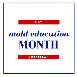 mold education month
