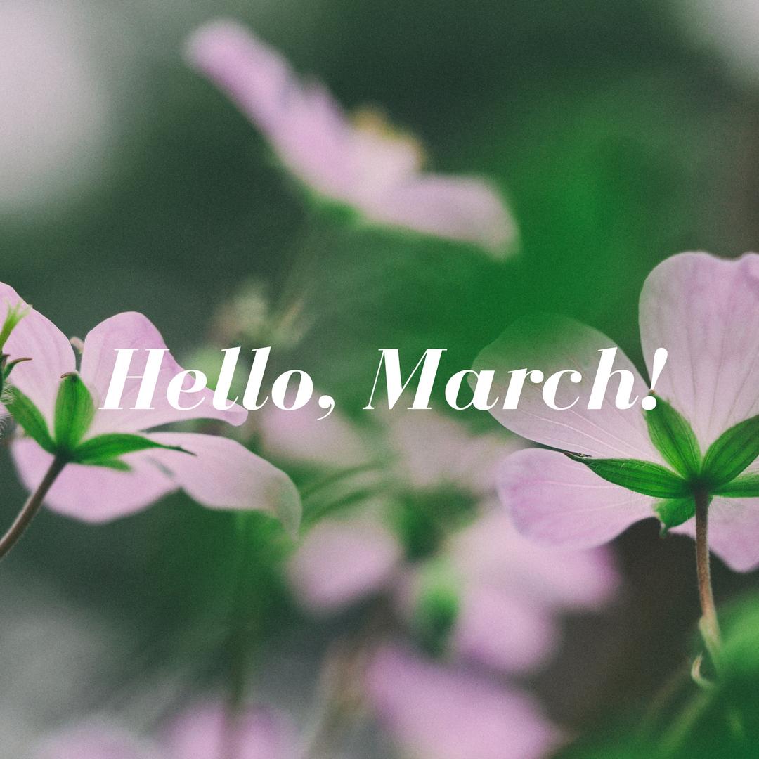 hello, march! (1)